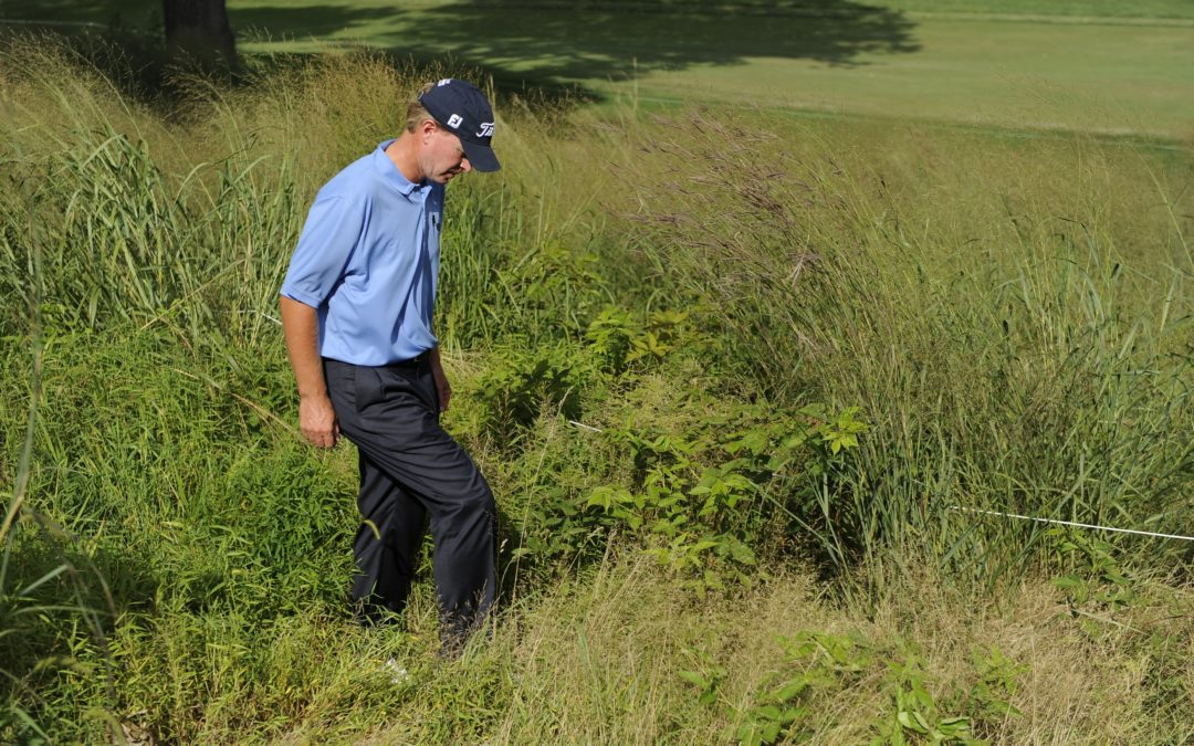 What To Do If You Lost Your Ball